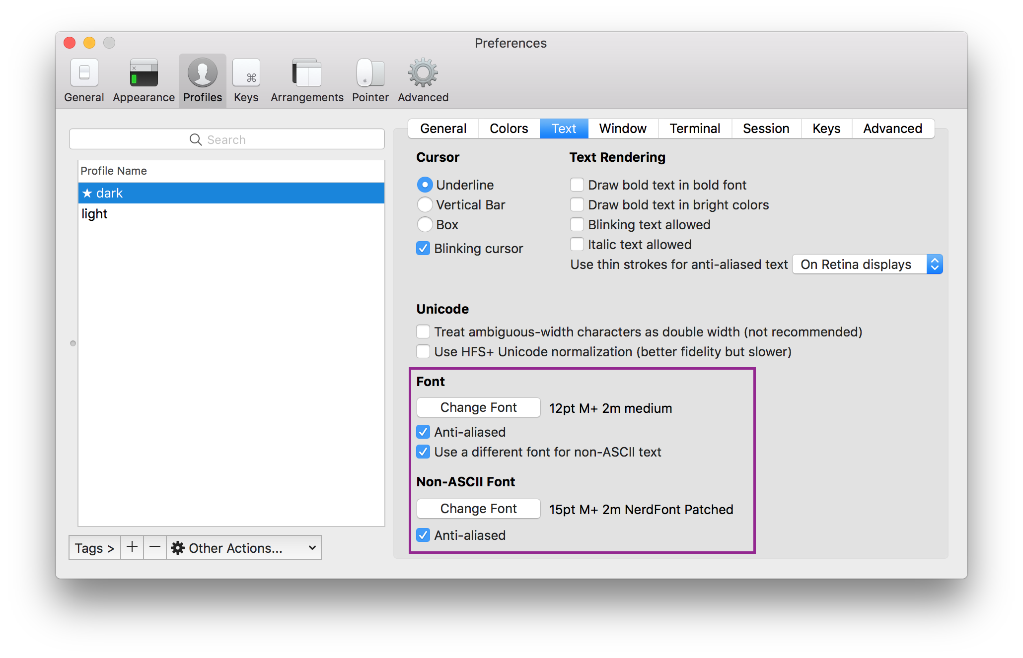 iTerm preference for text support